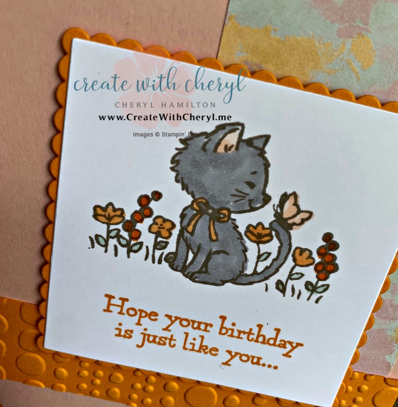 #createwithcheryl #PP423 #stampinup #prettykitty