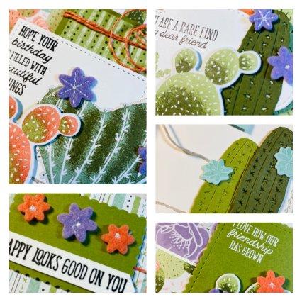 Flowering Cactus Medley