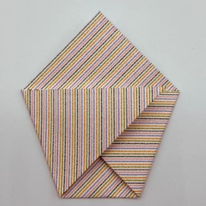 Fold the lower right & left corners up crossing over each other.