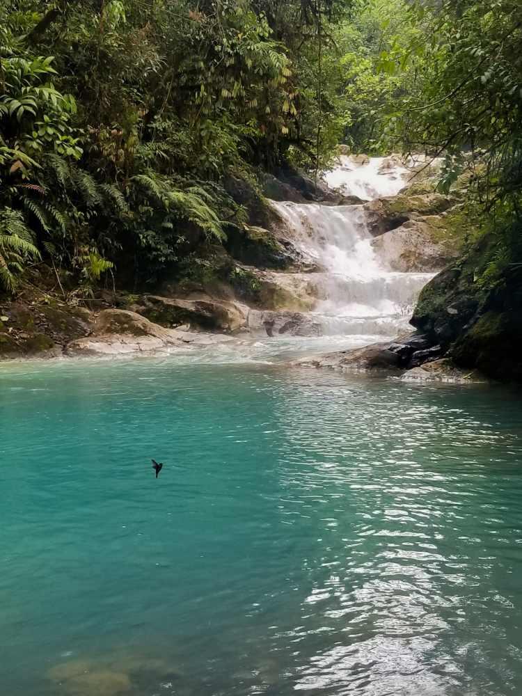 Blue Falls Costa Rica