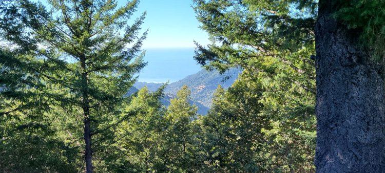 The Lost Coast from Kings Peak Road