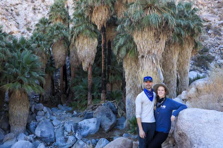FortyNine Palms Oasis in Joshua Tree National Park