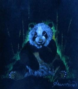 Panda Project Image