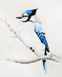 Blue Jay Project Image