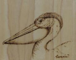 Pelican-Icon-transparent