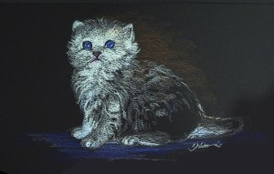 Fluffy Kitten Highlights Lesson 2, Section 6a