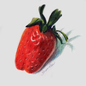 Freshly Picked Strawberry Project Image