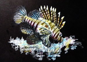 Lionfish Project Image