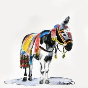 Spanish Burro Project Image