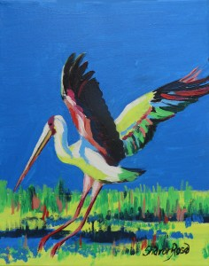 Okavango Stork Project Image