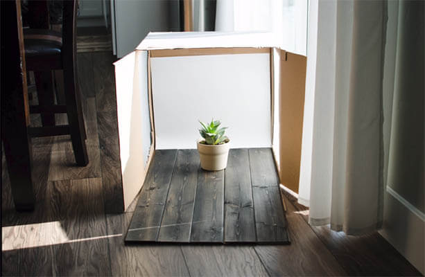 20+ Creative Business Classes You Can Take On Skillshare: DIY Studio Photography Lightbox + Demo