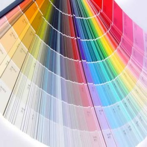 Joy Overstreet, color consultant, Portland OR, Vancouver WA, paint doctor,
