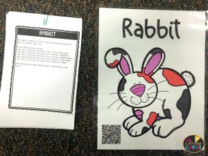 veterinarian classroom transformation multi step word problems