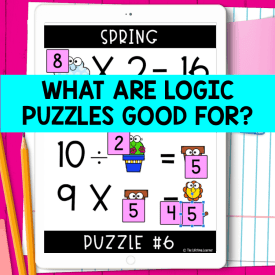 what are logic puzzles good for