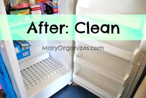 The Freezer Incident