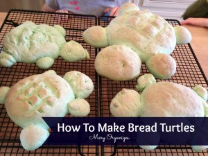 Bread Turtles