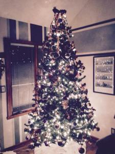 Christmas Tree 43