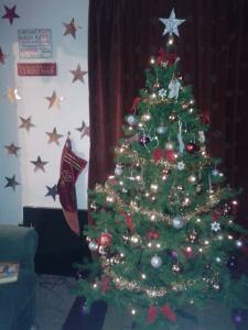Christmas Tree 52