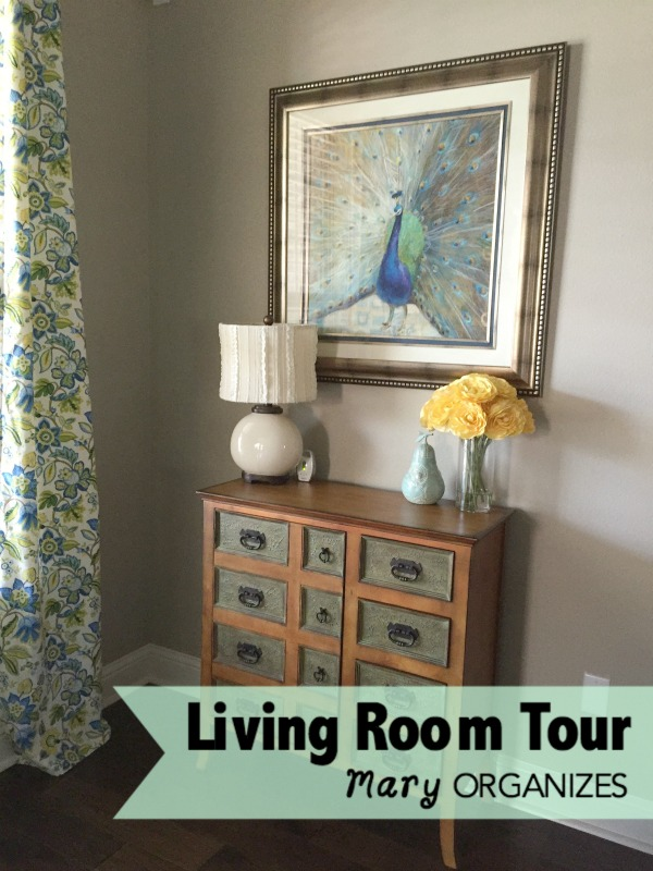 Living Room Tour - cabinet