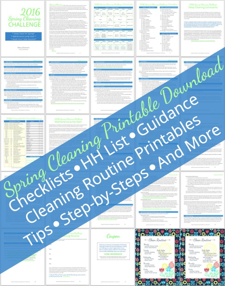 Snapshot - Spring Cleaning Printable Download - Mary ORGANIZES