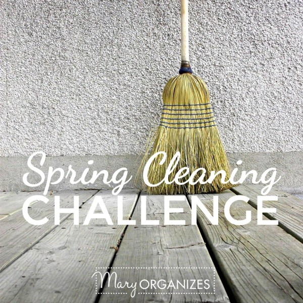 2016 Spring Cleaning Challenge