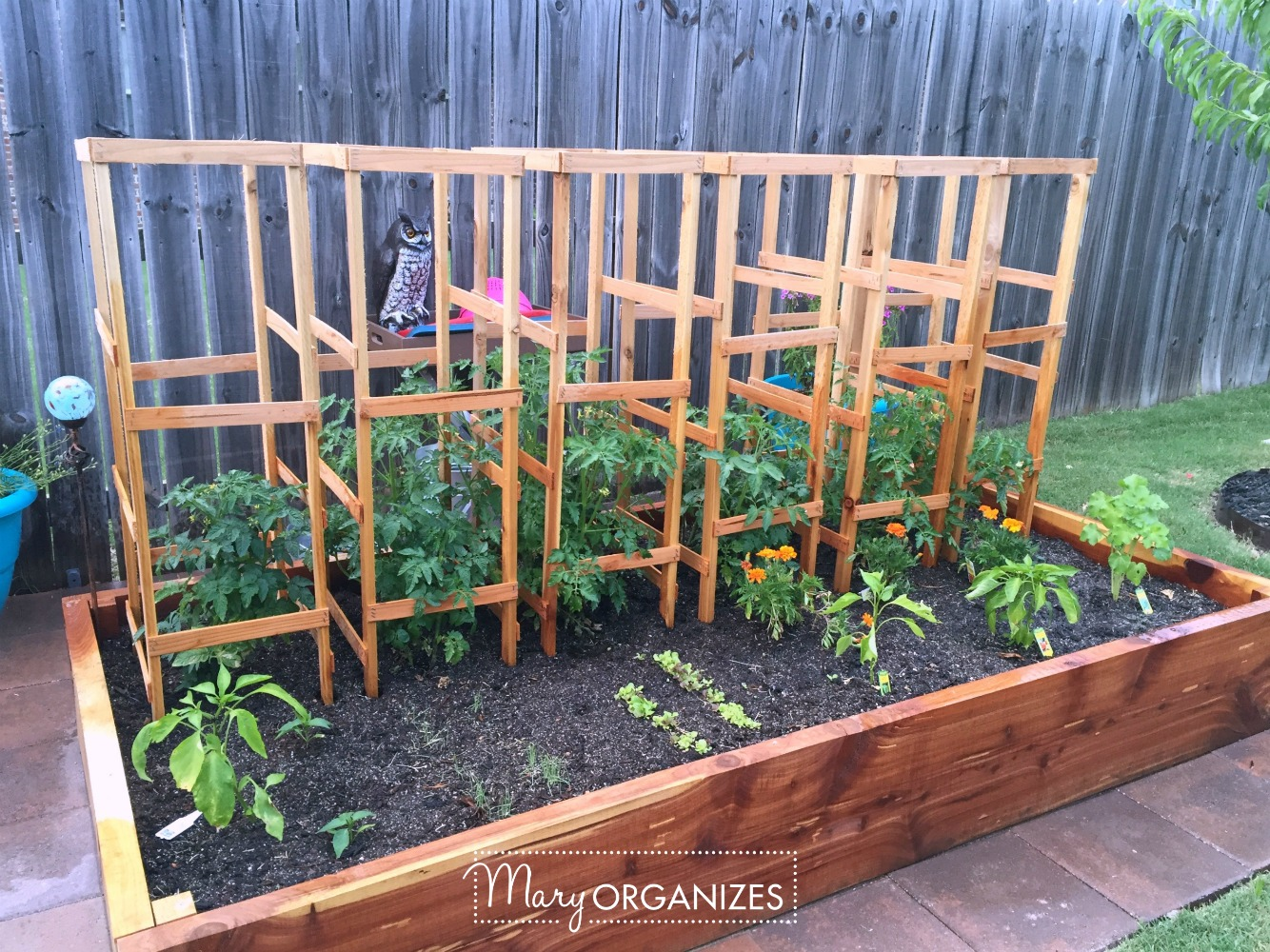 DIY Tomato Cage Tutorial for the Organic Garden 6