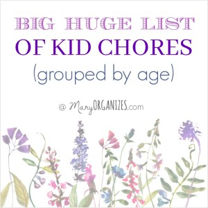Big Huge List of Kid Chores (grouped by age)!