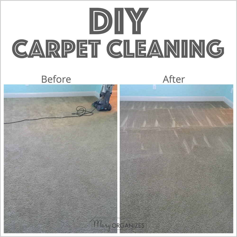 Diy carpet cleaning creatingmaryshome the power to do it yourself solutioingenieria Images