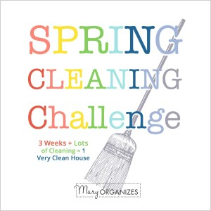 Spring Cleaning Challenge: WEEK 1