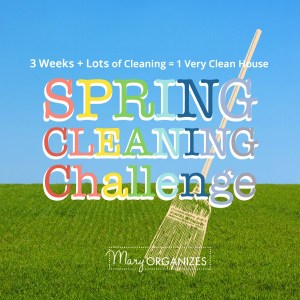 Spring Cleaning Challenge: WEEK 2