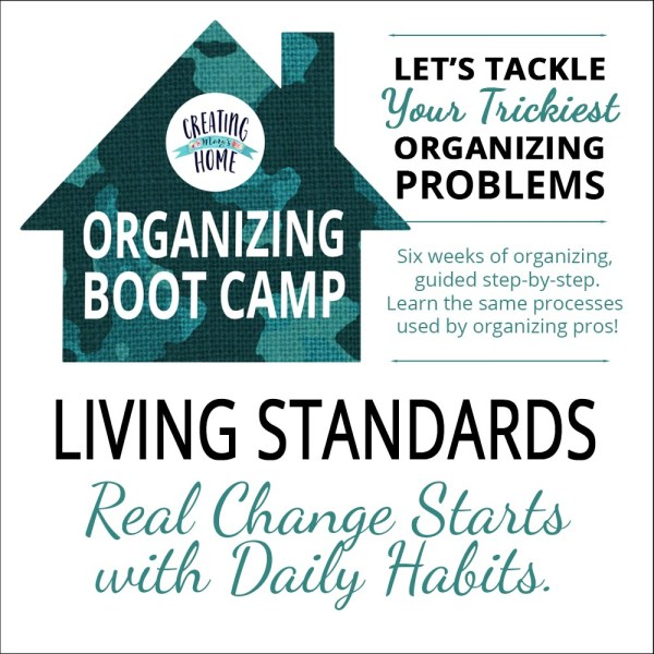 Living Standards – Minimum Daily Habits {OBC}