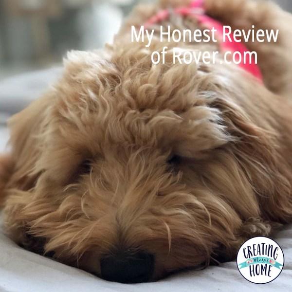 My Honest Review of Rover.com
