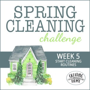 Start a Cleaning & Laundry Routine {SCC Week #5}