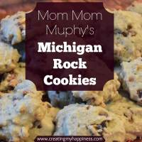 Michigan Rock Cookies