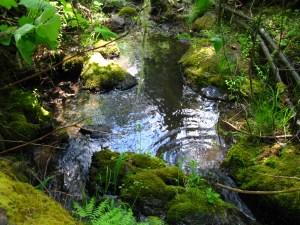 copper creek oregon