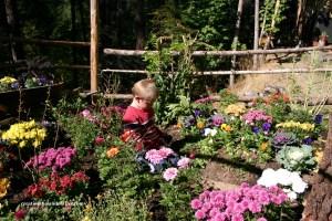 a-childs-garden