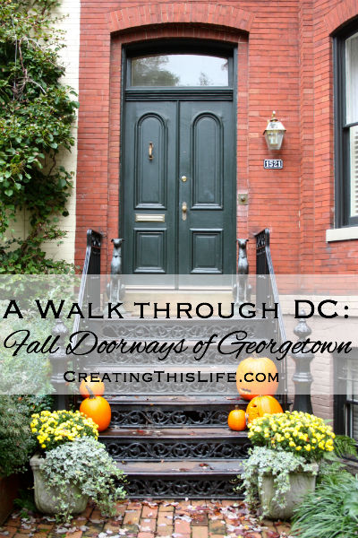 A Wall Through DC Fall Doorways of Georgetown
