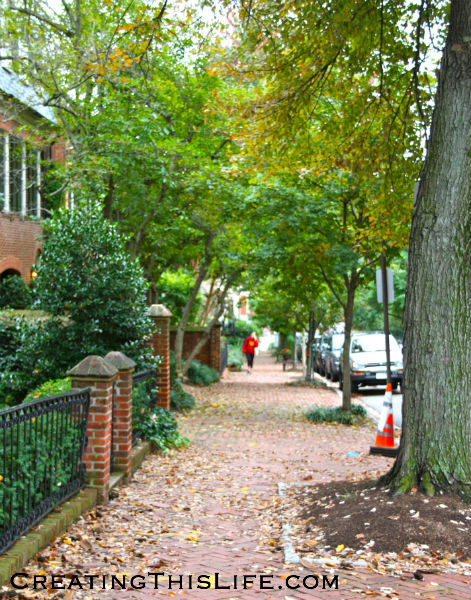 Washington DC Fall Street