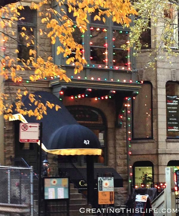 Chicago Street Christmas Lights