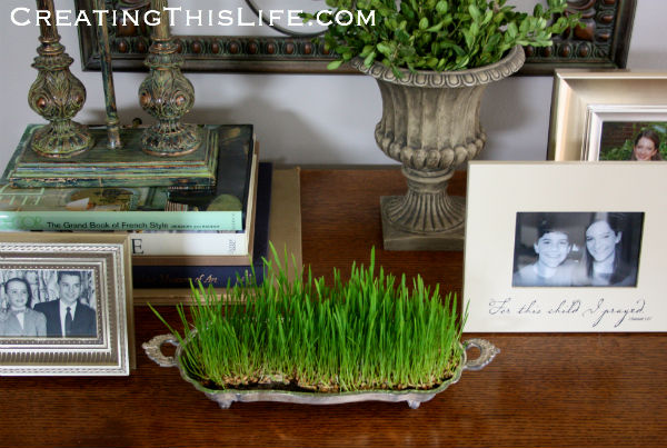 tabletop-vignette-with-easter-wheat-grass