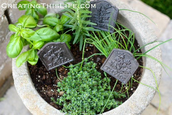 Herb garden in pot with cast iron markers at CreatingThisLife.com