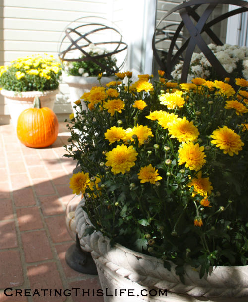 Fall front porch with mums pumpkins metal orbs