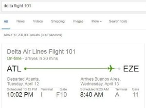google-search-flight-info