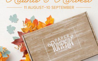 Pumpkins, Fall Leaves and fun!