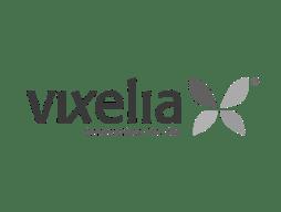 logo-vixelia2x