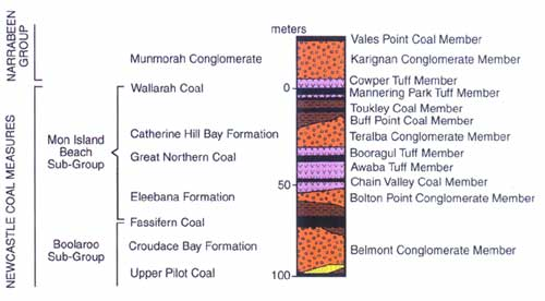 The local geological column for the upper portion of the Newcastle Coal Measures showing where the Great Northern coal seam occurs.
