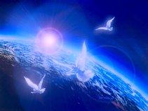 white-dove-world