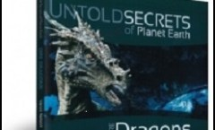 Dire Dragons book cover