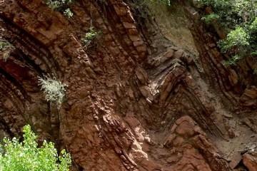 Folded Rock Layers-Zion Nation Park, Wikimedia