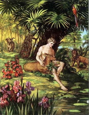 Adam in the Garden of Eden: From an Old Children's Bible